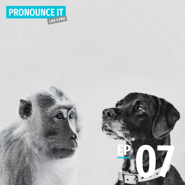 Bite-size Taiwanese - Pronounce it Like a Pro - Episode 7 - Suffix -á 仔 - Learn Taiwanese Hokkien